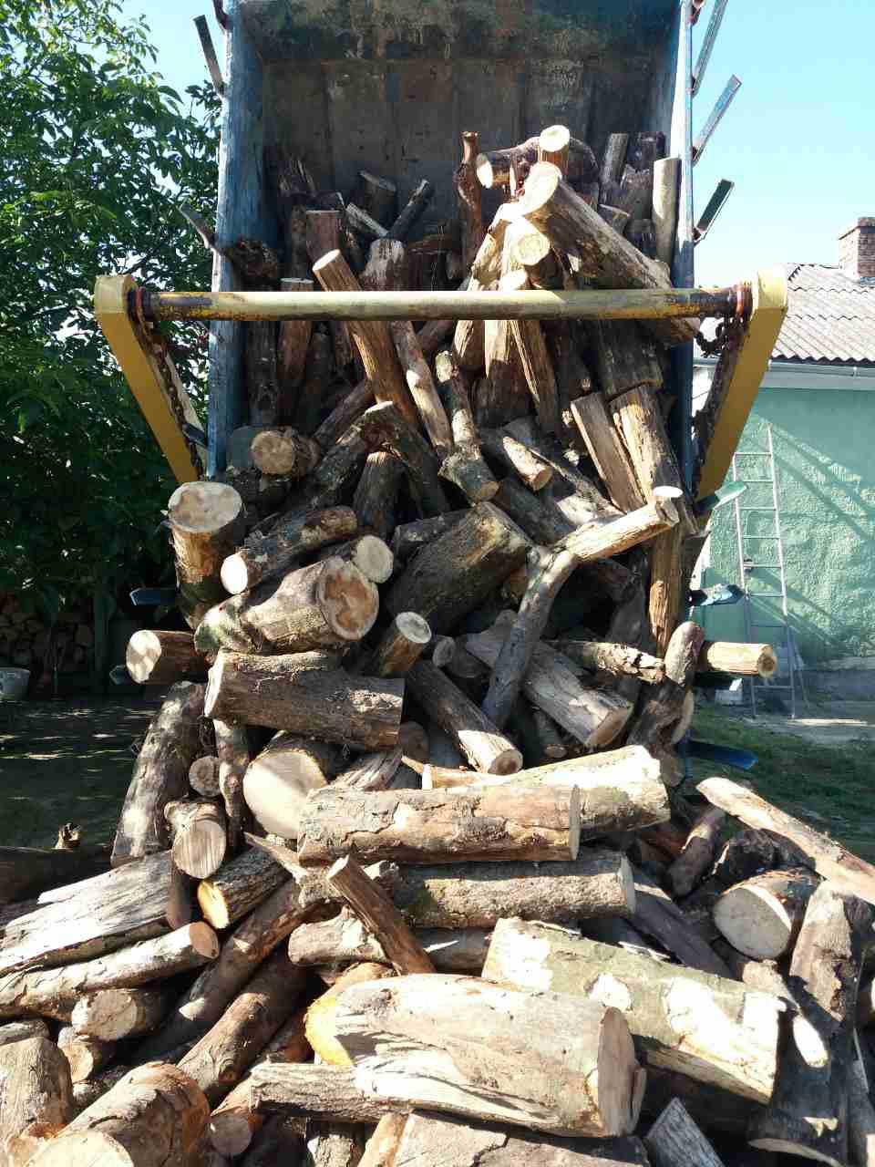 дрова колоди
